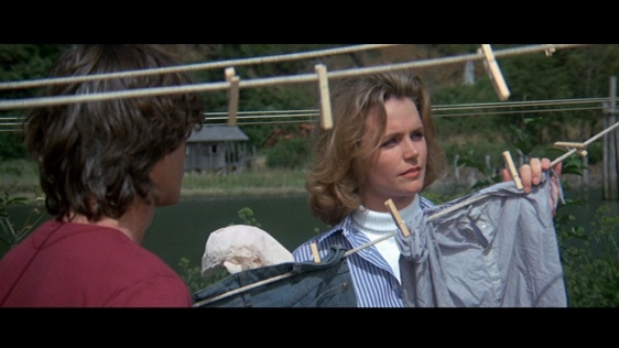 Sometimes a Lee remick