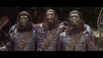 ape soldiers