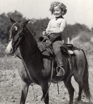 temple horseback