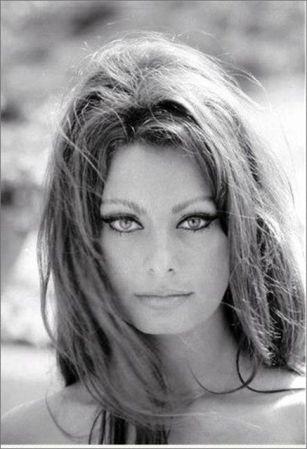 Sophia-Loren-sophia-loren-14908679-437-640