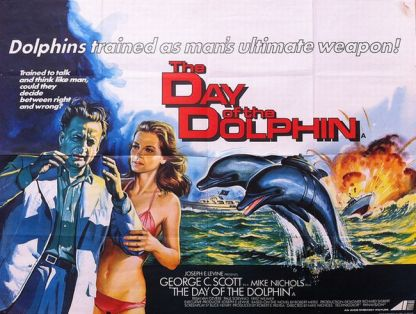 day_of_dolphin
