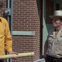 Final Chapter : Walking Tall   (1977)