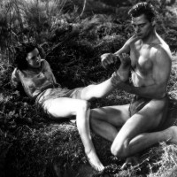 Tarzan the Ape Man (1932)    Tarzan and His Mate   (1934)