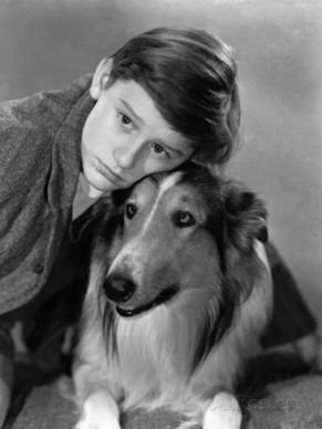 lassie-come-home-roddy-mcdowall-lassie-1943