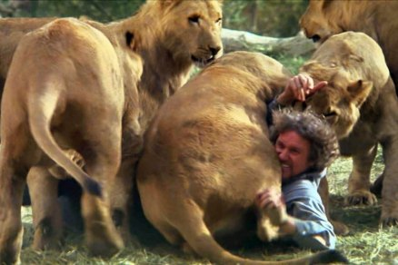 FOR SUNDAY PULSE - FILM STILL CAPTION: ROAR_Tackled: Hank (Noel Marshall) gets tackled by some lions playing around in Drafthouse Films' Roar. Courtesy of Drafthouse Films.