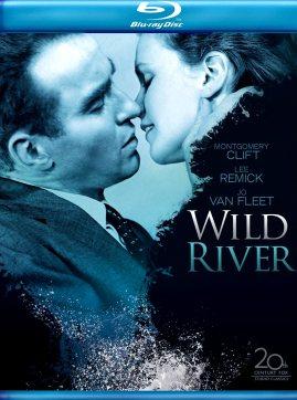 dvd-WILD-RIVER