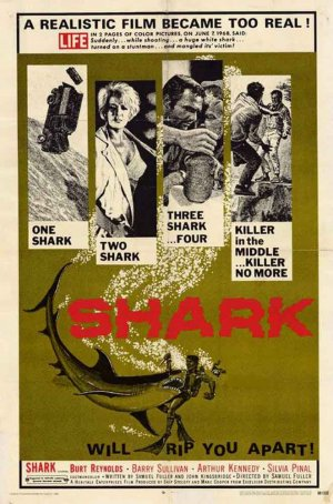 Shark-poster
