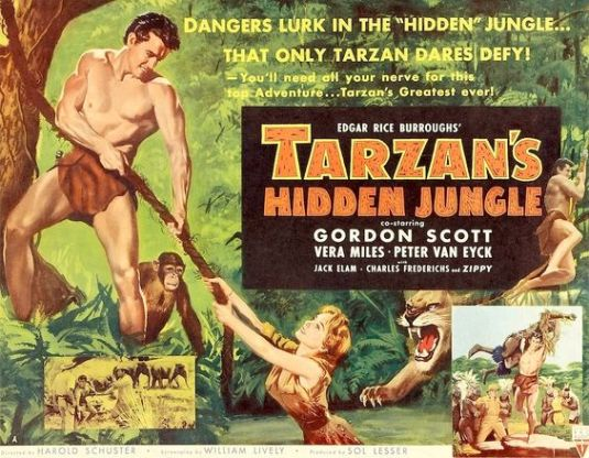 tarzan hidden jungle
