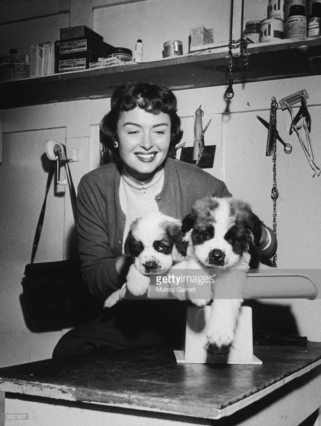 donna reed and dogs