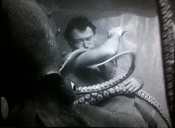 duke-octopus